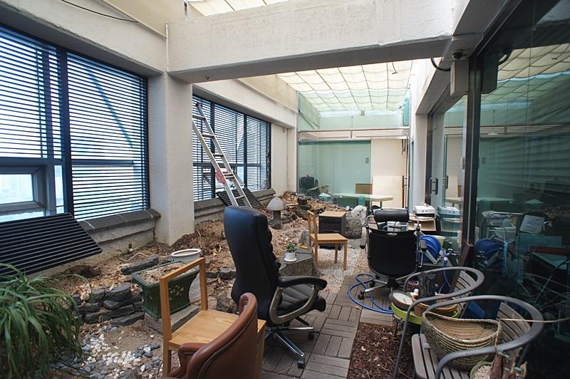 논현동 실내에 정원이 있는 인테리어 사무실임대
