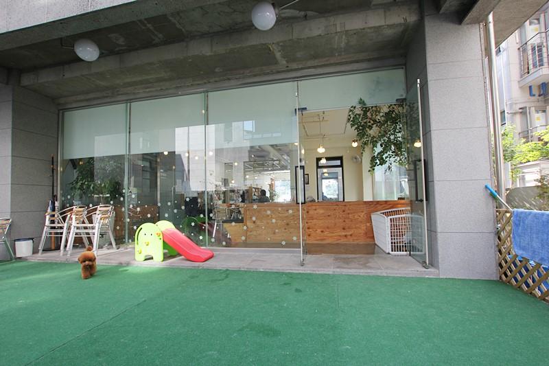 역삼동 상가임대 1층 무권리 애견카페